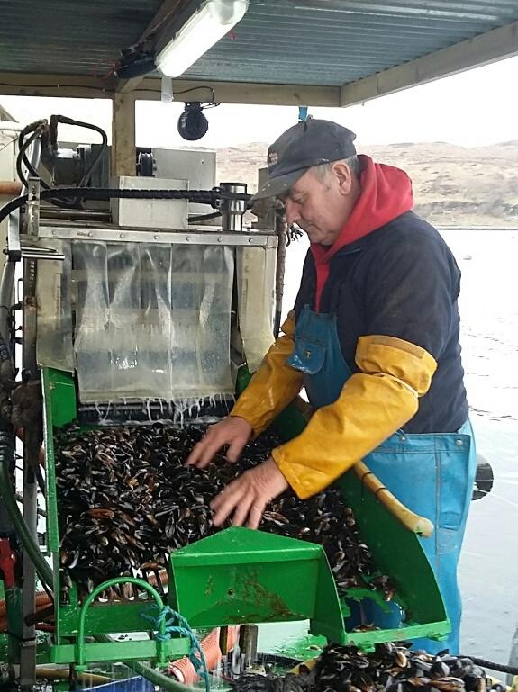 Loch Eishort Mussel Culture